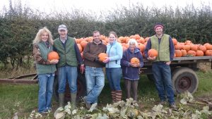 pumpkin picking bewholme hornsea driffield east yorkshire