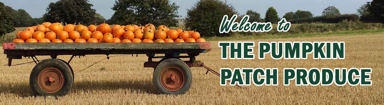 The Pumpkin Patch Produce pumpkin and squash growers east yorkshire hornsea driffield beverley bridlington pick your own